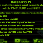 Raspberry Pi Remote maintenance with VNC, RDP and SSH