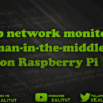 Setup network monitoring or man in the middle on Raspberry Pi