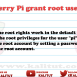 Grant Raspberry Pi root user rights
