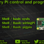 Control and program Raspberry Pi  GPIO