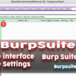Burp Suite Guide