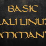 Basic Kali Linux Commands