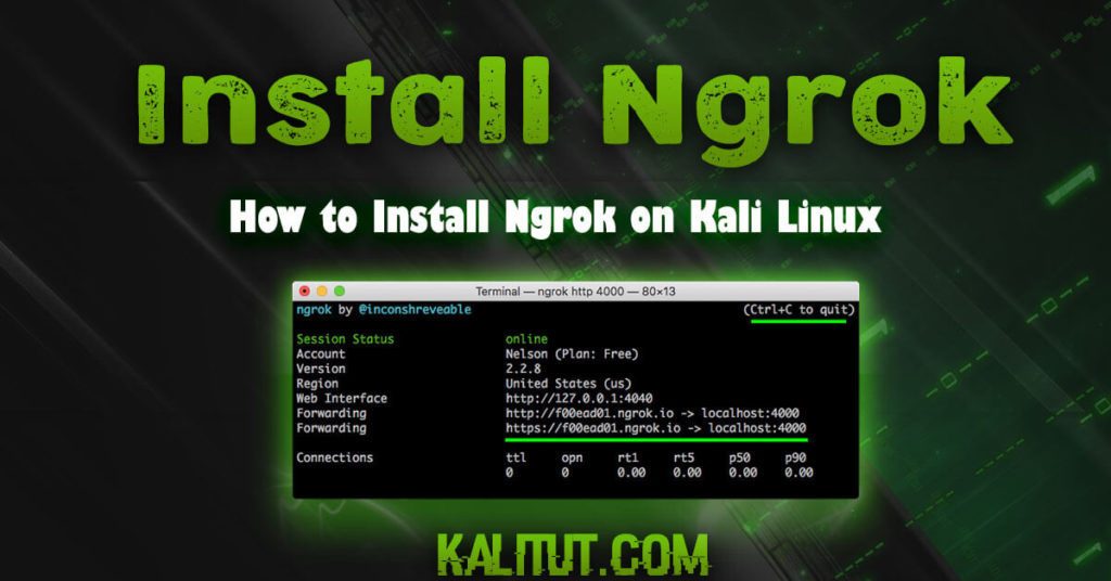 How to install ngrok